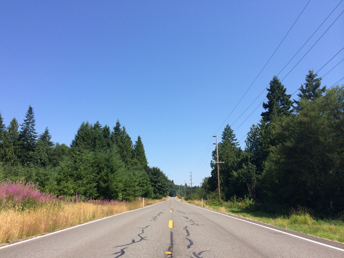 Notes from the STPTS (Seattle-Portland-Seattle Bike Ride)