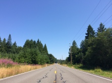 The return leg from the STP Seattle-to-Portland bike ride. Right before my pedal came off.